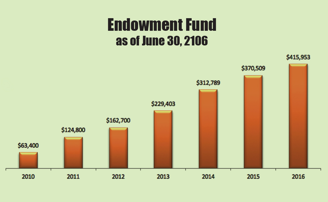 2017 Endowment Fund Snapshot